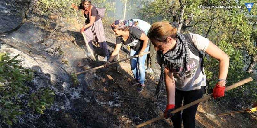 Dersim'deki orman yangını söndürüldü