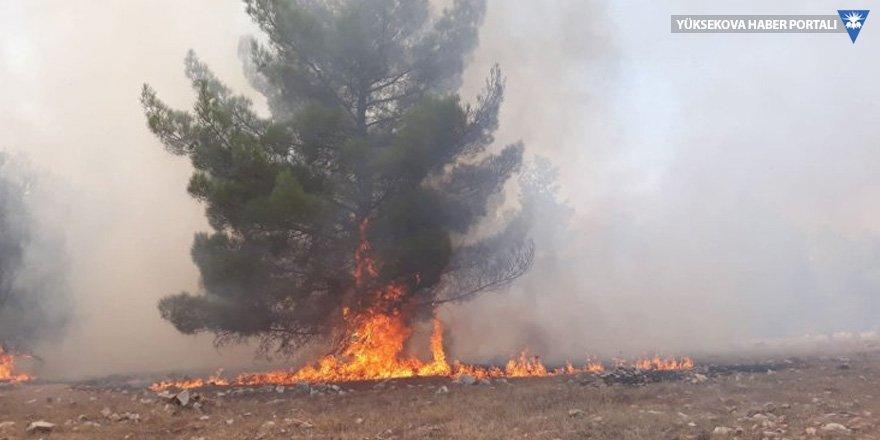 Göbeklitepe çevresinde yangın