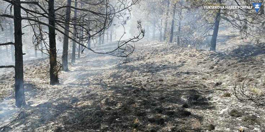 ODTÜ ormanında yangın çıktı!