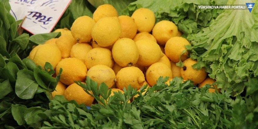 Limonun kilosu tarlada 1 TL, market ve pazarda 10 TL