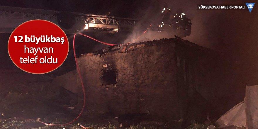 Yüksekova'da yangın: Onlarca hayvan telef oldu