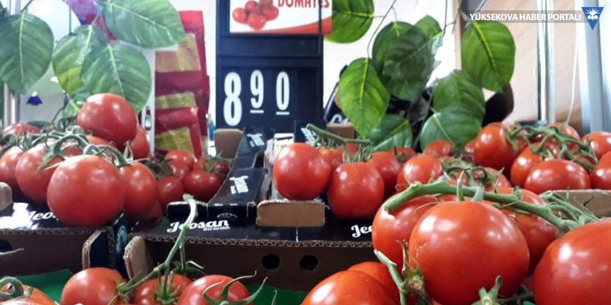 Komisyoncudan marketlere domates suçlaması: Kâr marjı belirlensin