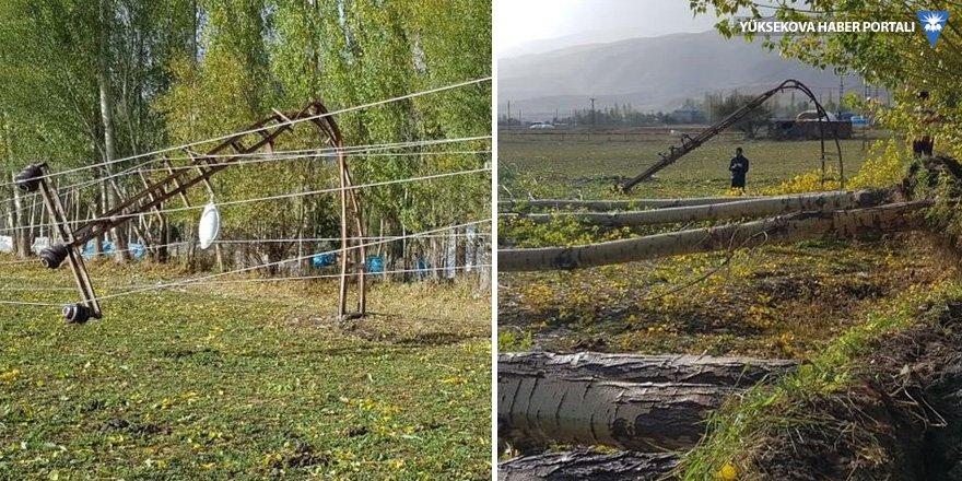 Yüksekova: Fırtına ağaçları ve direkleri devirdi