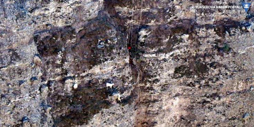 100 metre yükseklikte 6 keçi: AFAD ekibi kurtarma çalışması başlattı