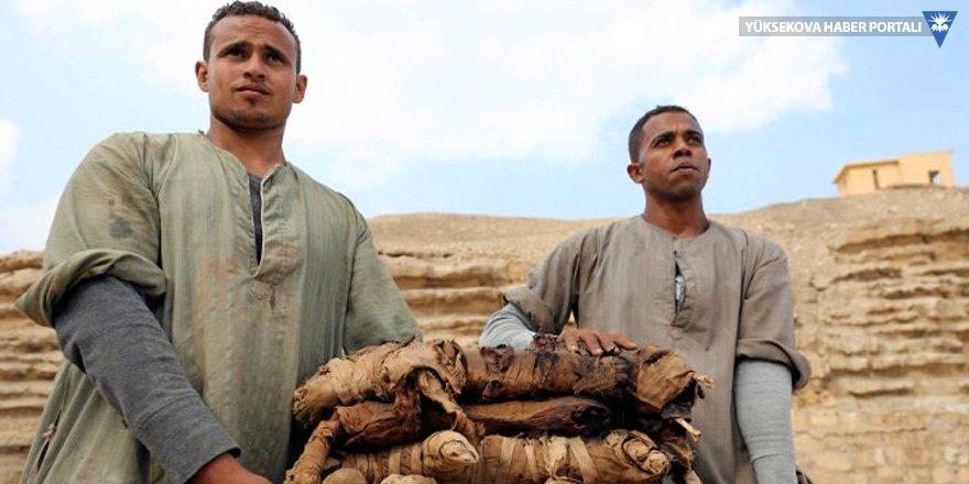 Mısır'da 6 bin yıllık mezardan kedi mumyaları çıktı