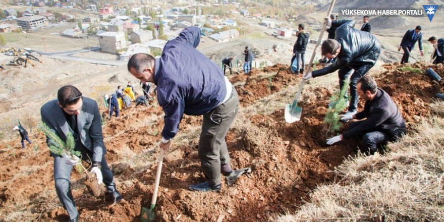 Hakkari Üniversitesi kampüsünde ağaçlandırma çalışması