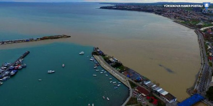 Marmara Denizi kahverengiye büründü