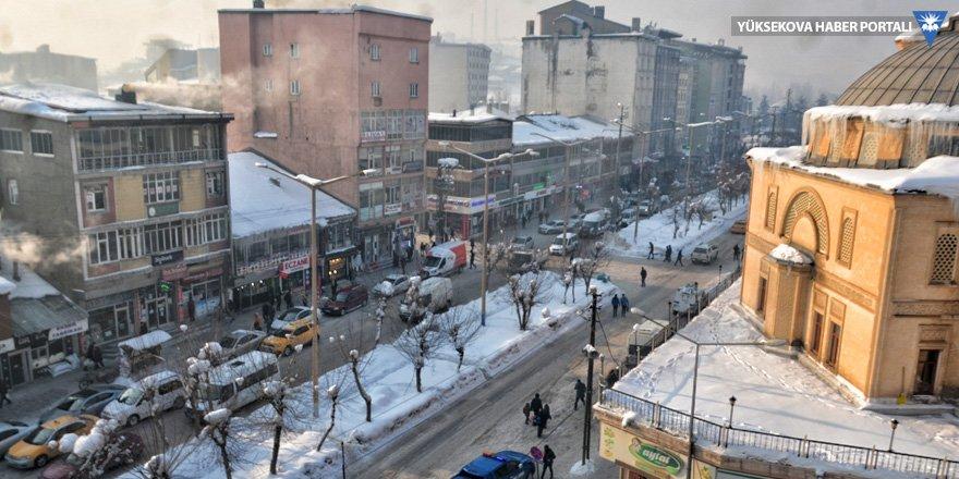 Yüksekova'da dondurucu soğuklar!