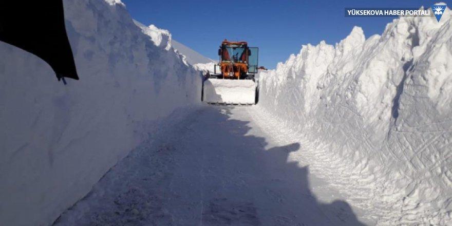 Bingöl'de 3 metreyi aşan karla mücadele ediliyor