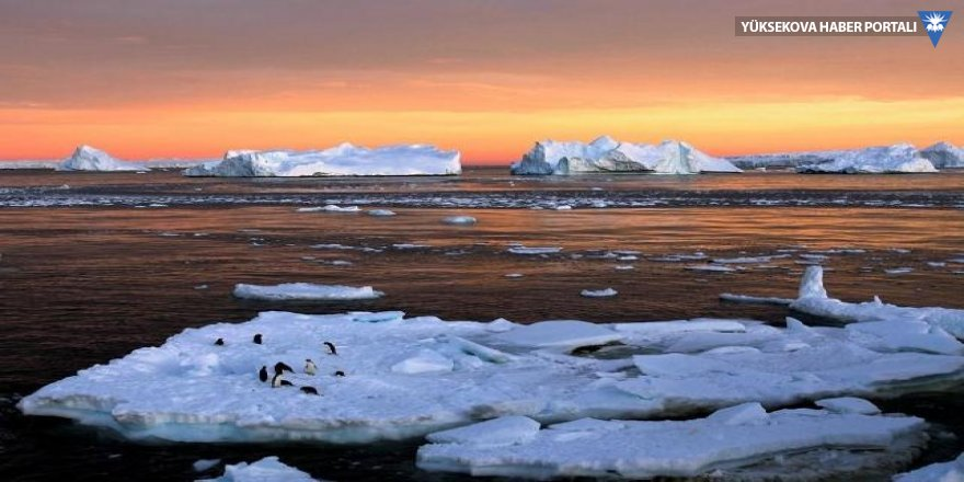 NASA'den ilginç Antarktika keşfi