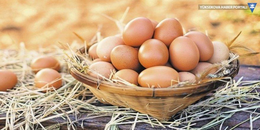 Yumurta uyarısı: Saman içinde olunca organik olmuyor!