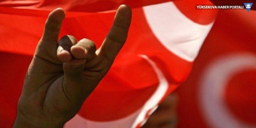 Türkiye ile Avusturya arasında 'bozkurt' krizi