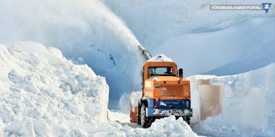 Baharda karla mücadele çalışması