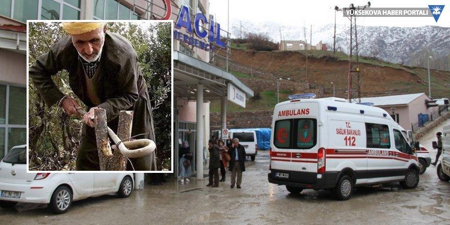 Şemdinli'de pancar toplarken uçurumdan düşen 1 kişi hayatını kaybetti