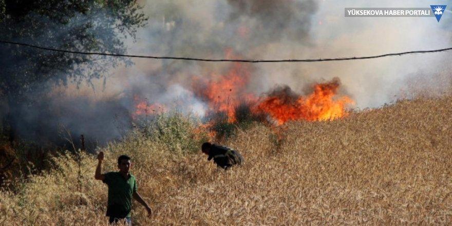 IŞİD yakmaya devam ediyor: Irak'ta 46 bin dönüm ekili arazi kül oldu