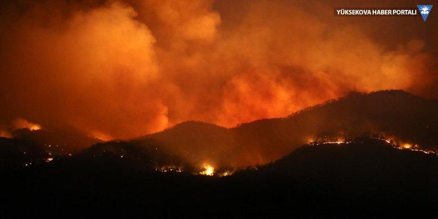Muğla'daki orman yangınında yaklaşık 500 futbol sahası büyüklüğünde alan kül oldu