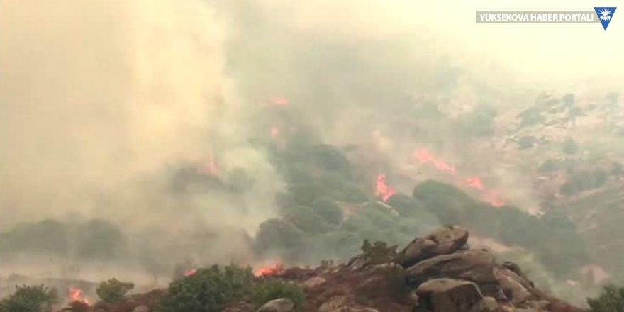 Marmara Adası'ndaki yangın yerleşim yerlerine yaklaştı