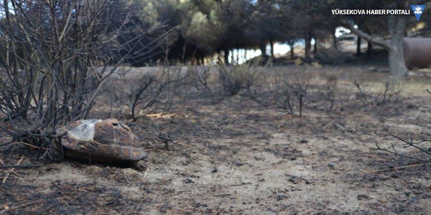Yangınla suçlanan baba-oğul adliyede