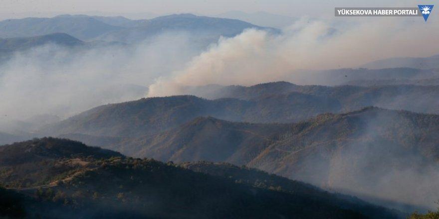 İzmir'de 500 hektarlık orman yangını