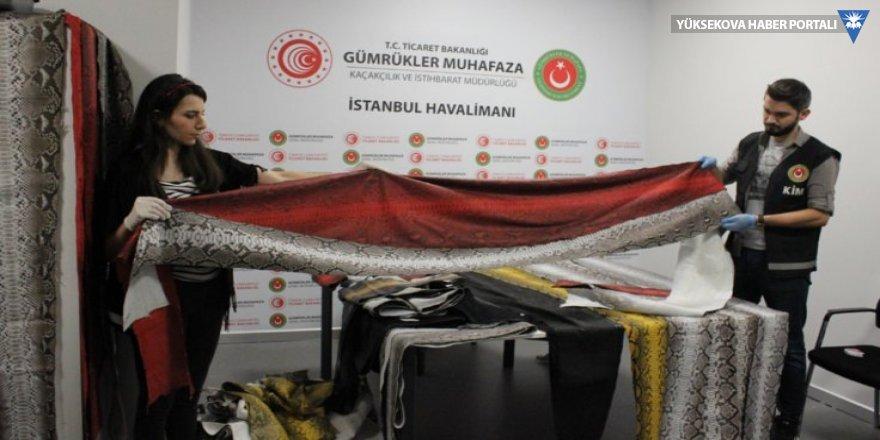 Medine uçağında 93 yılan derisi yakalandı