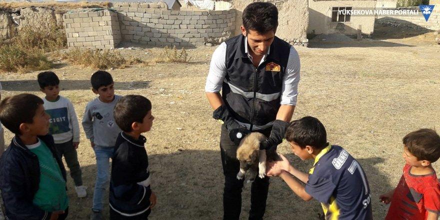 Van'da düştükleri kuyuda mahsur kalan köpek yavruları kurtarıldı