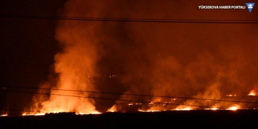 Ağrı'da sazlık alanda yangın