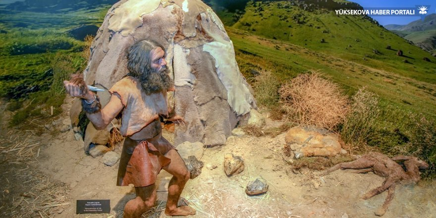 "Van'da ""Alt Paleolitik dönem""den izler"