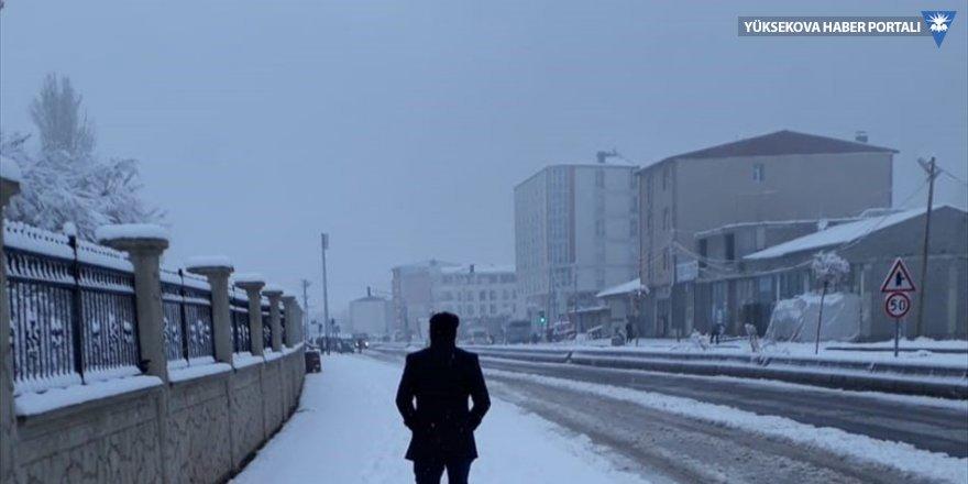 Van'ın Özalp ve Saray ilçelerinde kar etkili oldu