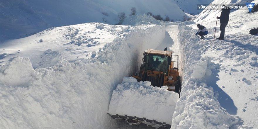 Hakkari'de 262 yerleşim yerinin yolu kapandı