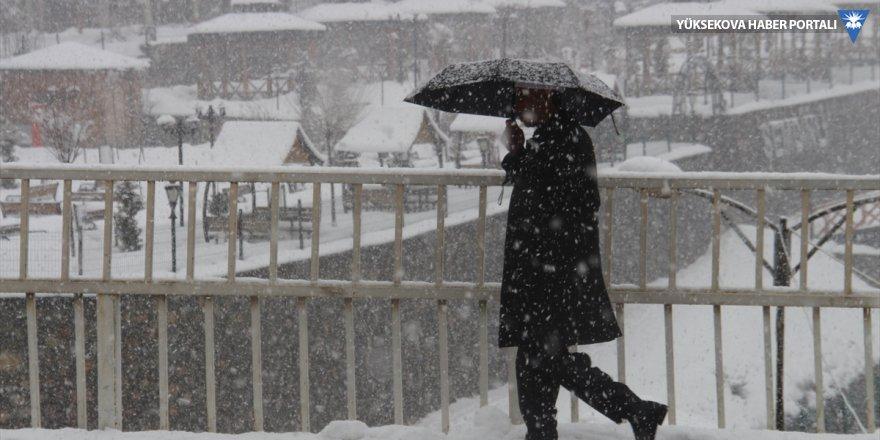 Erzurum, Ağrı ve Kars'ta kar yağışı etkili oluyor