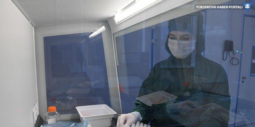 DSÖ, Rusya'da geliştirilen 9 koronavirüs aşısını onayladı