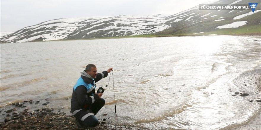 Süphan Gölü'nde kıyıya vuran ölü balıklar, ekipleri harekete geçirdi
