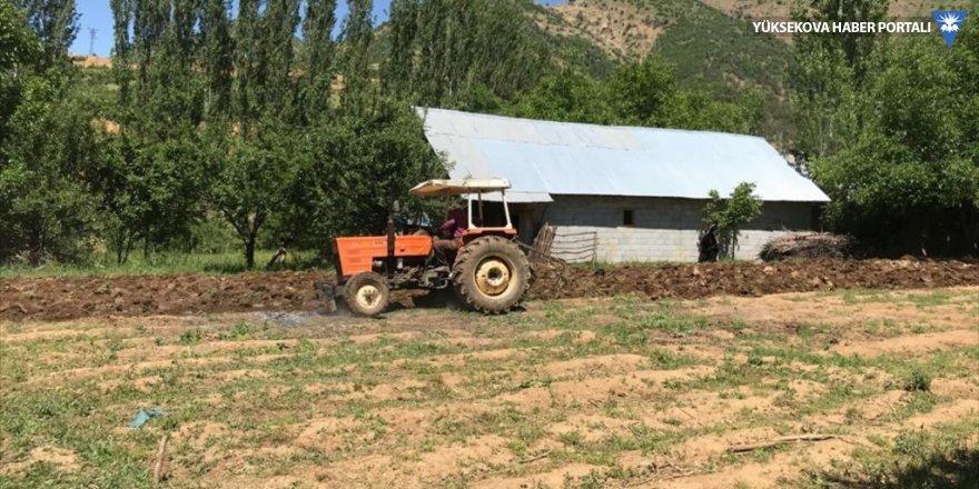 Şemdinli'de çiftçilerin bahar mesaisi