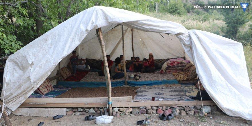 Yüksekova'da 11 kişilik aile çadırda yaşıyor