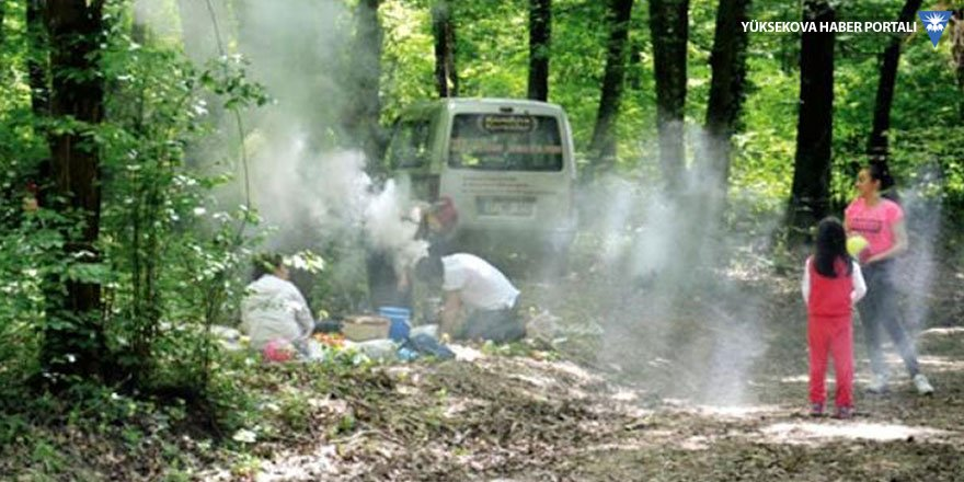 Ormanlık alanlarda mangal yakmak yasaklandı