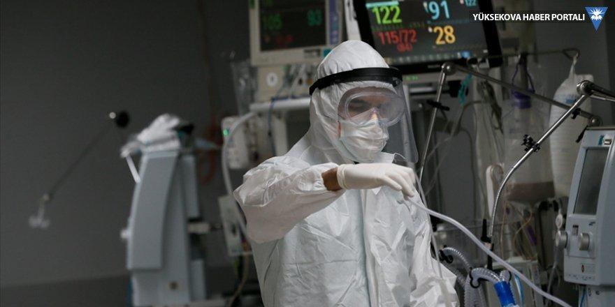 Türkiye'de son 24 saatte 9 bin 537 koronavirüs vakası tespit edildi, 181 kişi hayatını kaybetti