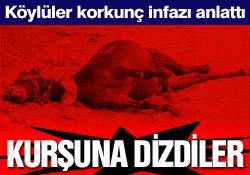 Başkale'de atlar infaz edildi