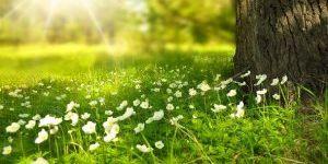 Mevsim geçişlerinde kalbe dikkat