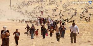 IŞİD'den kurtarılan 21 Ezidi Şengal'e döndü