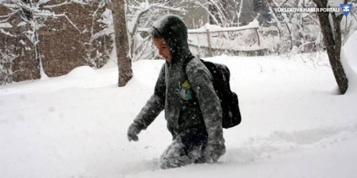 Hakkari ve Yüksekova'da taşımalı eğitime kar engeli