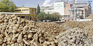 4 şeker fabrikası 415 milyon lira zarara satıldı