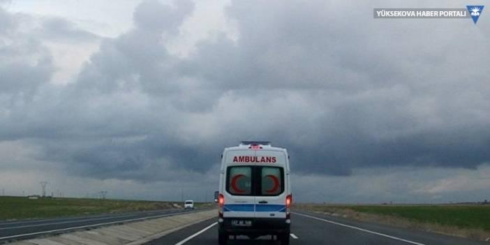 Van'da göçmenleri taşıyan minibüs şarampole devrildi