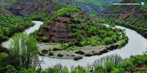Danıştay: Munzur Vadisi'ne baraj yapılamaz