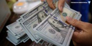 Merkez Bankası yıl sonu dolar beklentisi 5,64 TL