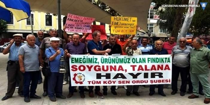 Fındık üreticileri Ankara'ya yürüyecek