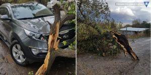 Van'da şiddetli fırtına hayatı felç etti