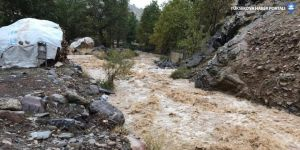 Çukurca'nın Çığlı köyünde aşırı yağışlar nedeniyle dereler taştı