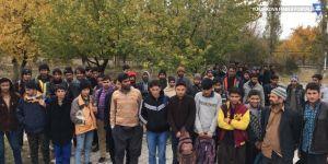 Van'da 47 yabancı uyruklu kaçak şahıs yakalandı