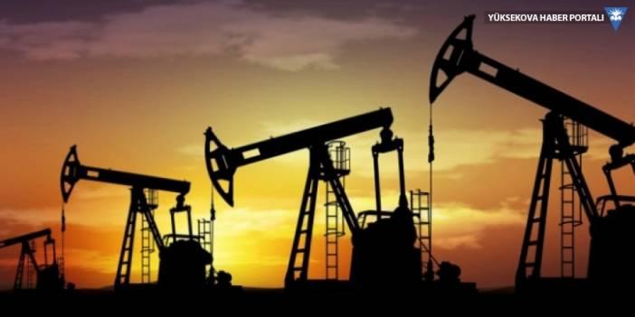 Başvuru kabul edildi; Adana'da petrol aranacak