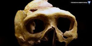 Sibirya'da ilk insan topluğuna ait olabilecek fosiller bulundu
